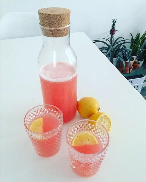 kuukskes_limonade_rabarber