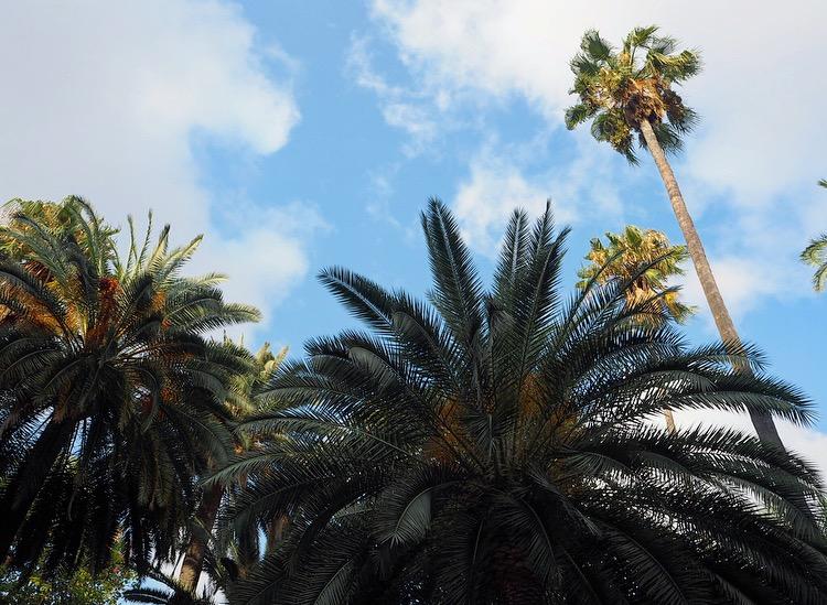Happy World Coconut Day: 8x leuke recepten met kokos