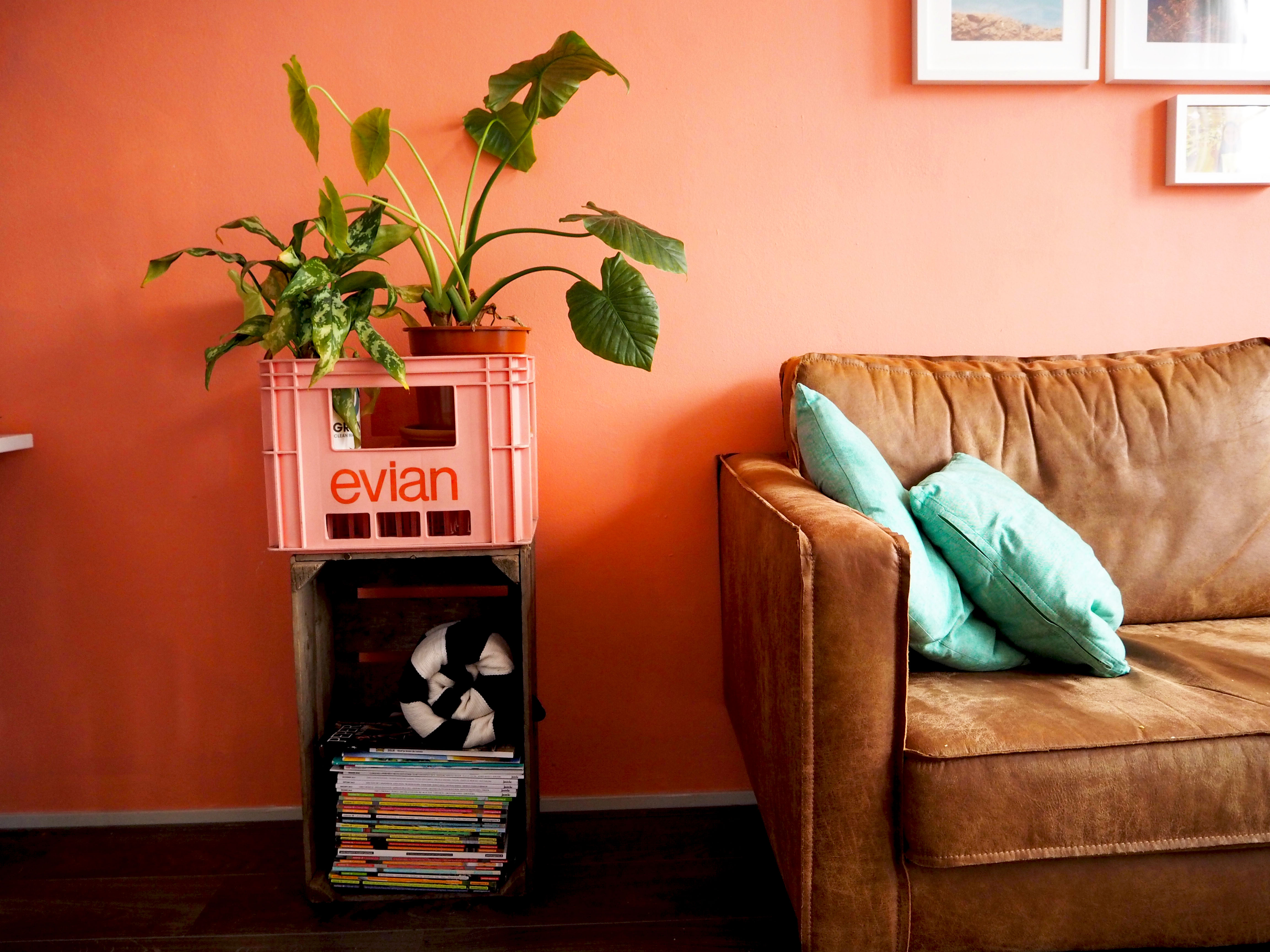 pink crate interieur