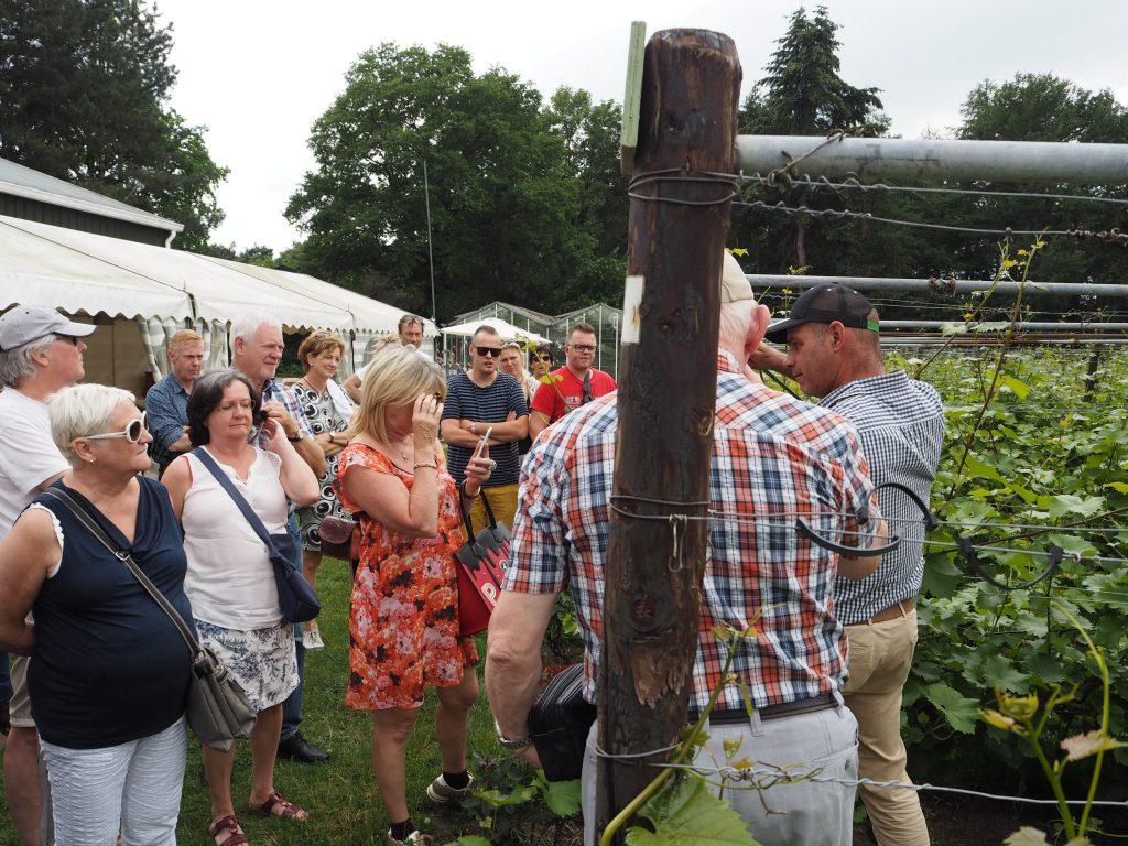 wijn- aspergeboerderij de santspuy