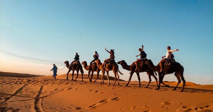 Marokko 22 t/m 24 maart 2015: Errachidia, Merzouga en Gorge du Todra